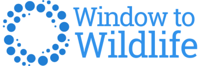 Window To Wildlife